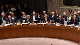 Les membres du Conseil de sécurité des Nations unies votent une résolution sur la Syrie, le 18 décembre 2015, à New York (Etats-Unis). (TIMOTHY A. CLARY / AFP)