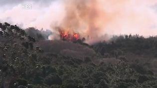 Un incendie en Corse du Sud en Février 2019 (CAPTURE ECRAN FRANCE 2)