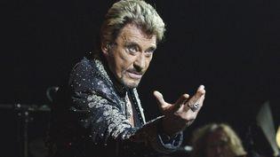 Johnny Hallyday, en concert à Bruxelles, en 2006. (MAXPPP)