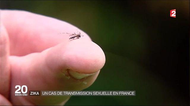 Virus Zika : un premier cas par voie sexuelle en France
