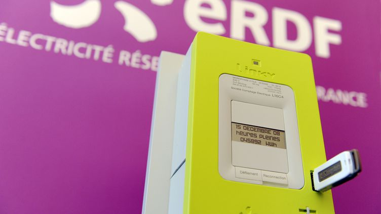 """Présentation du nouveau compteur électrique communicant """"Linky"""" dans une région test à Tours le 18 mars 2009. (ALAIN JOCARD / AFP)"""