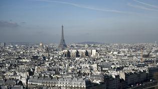 Au total, 12% des véhicules circulant habituellement dans Paris et la petite couronne seront interdits dans ce périmètre par la mise en place de la circulation différenciée, jeudi 22 juin 2017. (PHILIPPE LOPEZ / AFP)