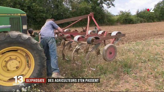 Glyphosate : des agriculteurs s'en passent
