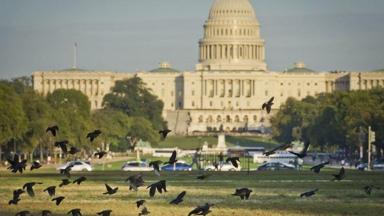 Le Capitole, siège du Congrès américain, à Washington (Etats-Unis), le 14 octobre 2013. (MLADEN ANTONOV / AFP)