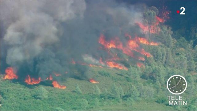 La Californie sous les flammes