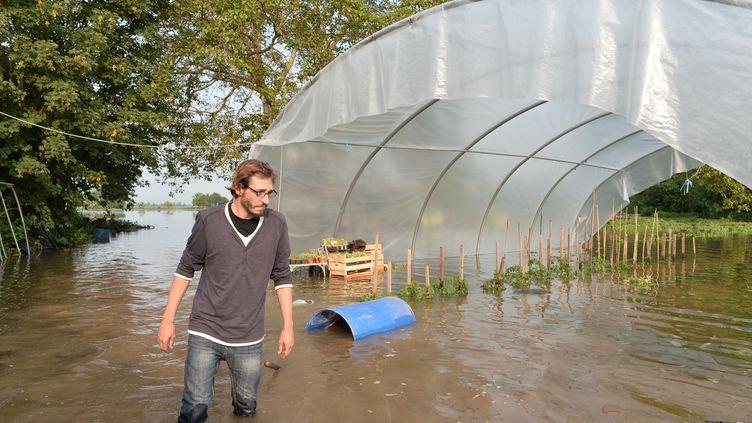Nicolas Martin constate les dégâts et ses cultures sous l'eau, à Freneuve (Yvelines), le 5 juin 2016. (JEAN-FRANCOIS MONIER / AFP)