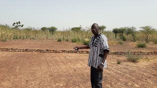 Au Burkina Faso, certaines terres, comme ici, sont inexploitables. (CELIA QUILLERET / RADIO FRANCE)