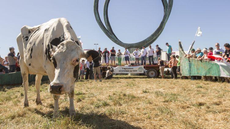 Manifestation des producteurs de lait devant l'usine Lactalis de Laval le 23 août 2016 (CHRISTIAN WATIER / MAXPPP)