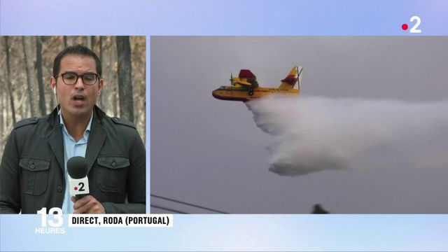 Incendies au Portugal : une situation sous contrôle mais un retour des vents redouté