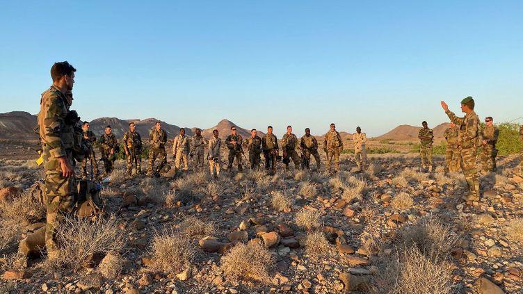 Des officiers français et djiboutiens lors d'un entraînement militaire dans le désert à Ali Sabieh (Djibouti), le 30 janvier 2021. (DAPHNE BENOIT / AFP)