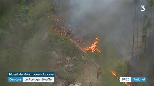 Canicule : le Portugal en proie aux flammes
