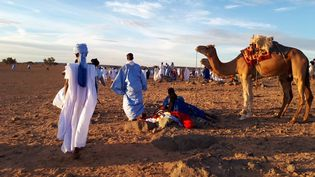 Une course de chameaux dans un village touareg de Mauritanie, en novembre 2018. (CLAUDE GUIBAL / FRANCE-INFO)