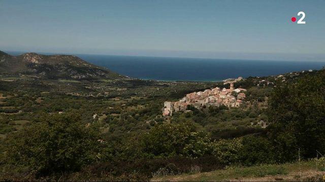 Corse : la solidarité des commerçants ambulants dans les villages difficiles d'accès