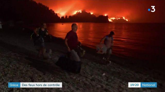 Grèce : 56 000 hectares partis en fumée