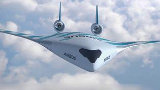 Airbus a dévoilé un prototype d'avion du futur, Maverick. Le but est de faire baisser de 20% les besoins en carburant. (France 3)