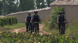 Bourgogne : les gendarmes de la région surveillent les vignes des grands domaines. (FRANCE 3)