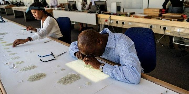 Des employés évaluent la qualité des diamants (GIANLUIGI GUERCIA / AFP)