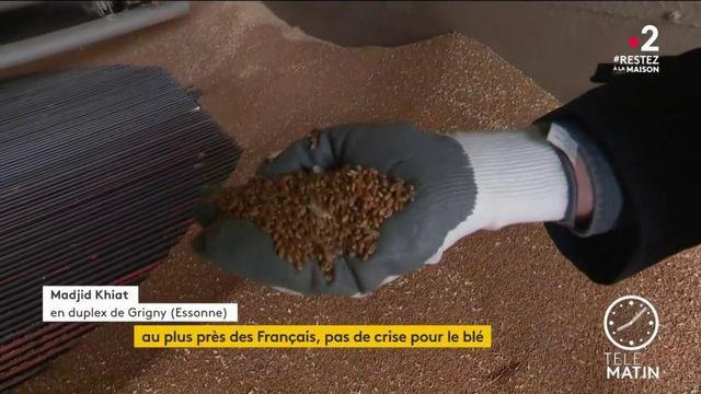 Confinement : la production de blé française se maintient