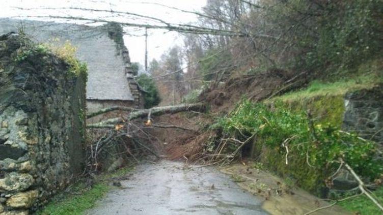 Un glissement de terrain s'est produit à Lortet (Hautes-Pyrénées), le 25 janvier 2014. ( RÉGIS COTHIAS / FRANCE 3 MIDI-PYRÉNÉES)