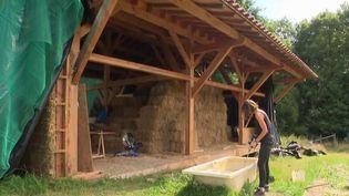 Construire soi-même sa maison est une solution économique et écologique qui séduit de plus en plus de familles. L'équipe de journalistes du 12/13 de France 3 est partie à la rencontre d'un couple qui vit dans sa maison en bois et en paille en Dordogne. (France 3)