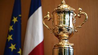 Le trophée Webb Ellis, remis aux vainqueurs de la Coupe du monde de rugby, exposé à Paris, le 24 novembre 2017. (CHRISTOPHE SIMON / AFP)