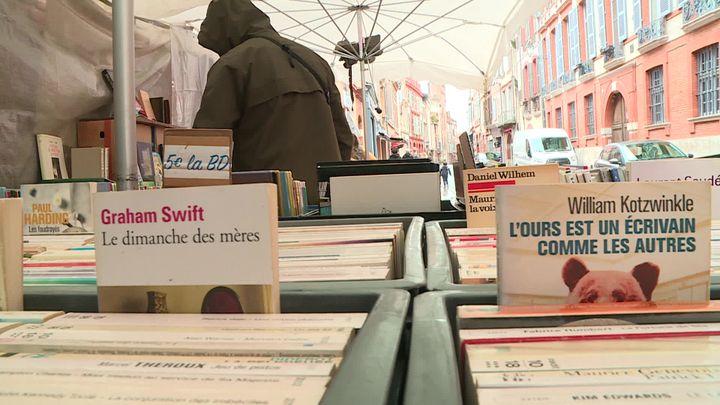 Toulouse (Marché aux livres)