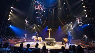 """L'un des tableaux poétiques du dernier spectacle du Cirque Gruss, """"Pégase et Icare"""".  (Gruss/Farfadais)"""