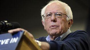 Le candidat démocrate Bernie Sanders durant un metting à Porsmouth (New Hampshire, Etats-unis), le 7 février 2016. (DENNIS VAN TINE / GEISLER-FOTOPRES / AFP)