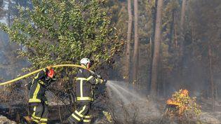 Les pompiers luttent contre un feu de forêt en Rhône-Alpes, en août 2019. (FABRICE HEBRARD / MAXPPP)