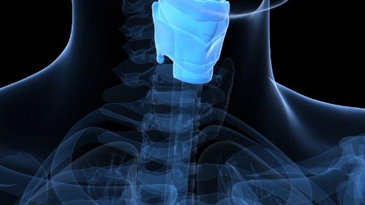 De 1 800 à 2 000 patients subissent chaque année une ablation totale du larynx en France. (SKU / AFP)