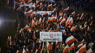 Des dizaines de milliers de nationalistes défilent à Varsovie (Pologne), le 11 novembre 2017, à l'occasion de la fête de l'indépendance. (ALEXEY VITVITSKY / SPUTNIK / AFP)