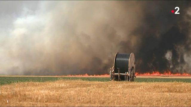 Incendies estivaux : le nord de la France désormais concerné