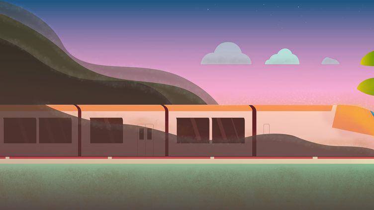 Un train diesel pollue en moyenne neuf fois plus qu'un modèle électrique, par kilomètre et par passager. (BAPTISTE BOYER / FRANCEINFO)