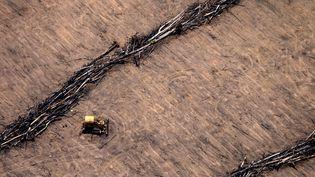 Un tracteur sur un champ de soja, dans l'Etat du Mato Grosso, dans le centre du Brésil, le 8 décembre 2008. (RODRIGO BALEIA / AE / AFP)