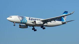Trois heures après avoir décollé de Paris, l'avion d'Egyptair avait disparu des radars et s'était abîmé dans la mer Méditerranée. (WOLFGANG MINICH / PICTURE ALLIANCE / AFP)