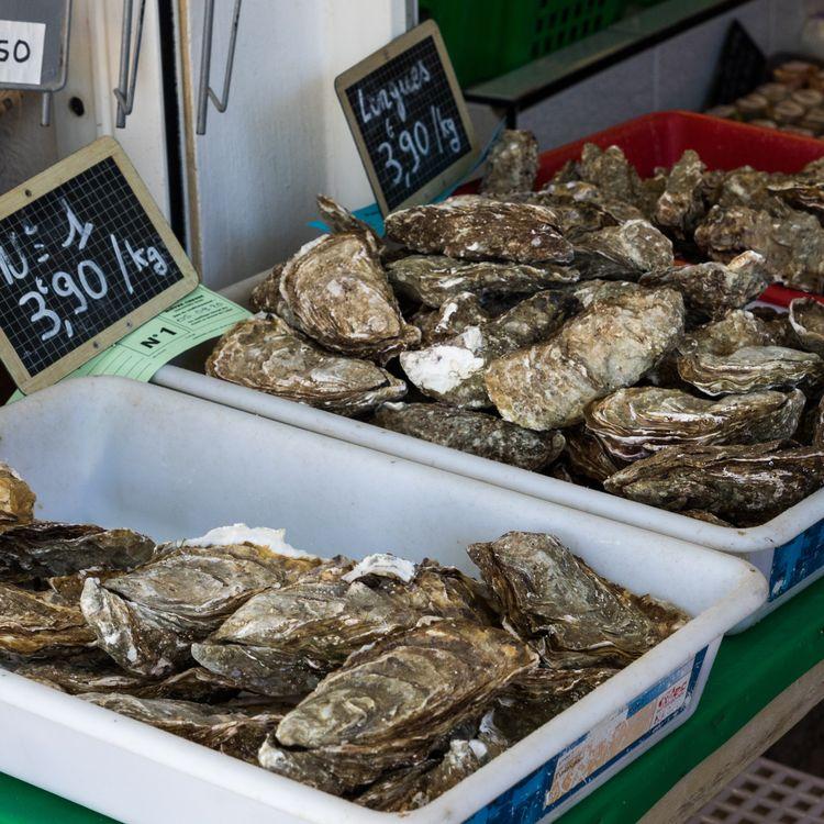 Huîtres au marché de Talmont-Saint-Hilaire, Vendée (photo prise le 5 septembre 2020).  (MAUD DUPUY / AFP)