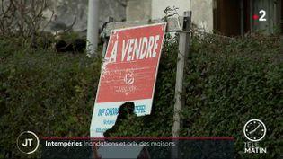 Intempéries : les crues de la Seine impactent-elles le marché de l'immobilier ? (FRANCE 2)