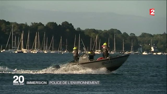Immersion : la police de l'environnement dans le golfe du Morbihan
