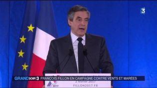 François Fillon en meeting à Charleville-Mézières. (FRANCE 2)