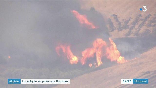 Algérie : de violents incendies ravagent la Kabylie