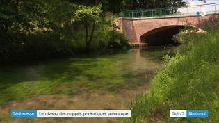 Cette rivière normande n'est pas à sec, mais les menaces de restrictions d'eau sont sérieuses (France 3)
