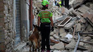 Des sauveteurs recherchent des victimes dans les décombres des maisons, à Amatrice(Italie), le 24 août 2016. (FILIPPO MONTEFORTE / AFP)