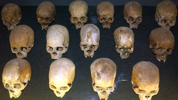 Des crânes de victimes du génocide rwandais, dans le memorial de Kigali (Rwanda), photographiés le 15 janvier 2006. (WOLFGANG LANGENSTRASSEN / DPA / AFP)