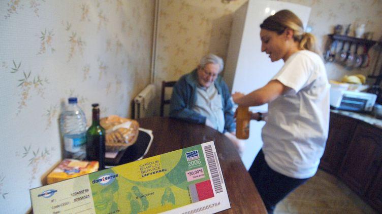 Les aides ménagères font partie des métiers en tension actuellement. Photo d'illustration. (MYCHELE DANIAU / AFP)