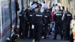 La police danoise contrôle un train occupé par des migrants de Syrie et d'Irak, mercredi 9 septembre 2015, à la gare de Rodby (Danemark). (JENS NOERGAARD LARSEN / SCANPIX DENMARK / REUTERS)