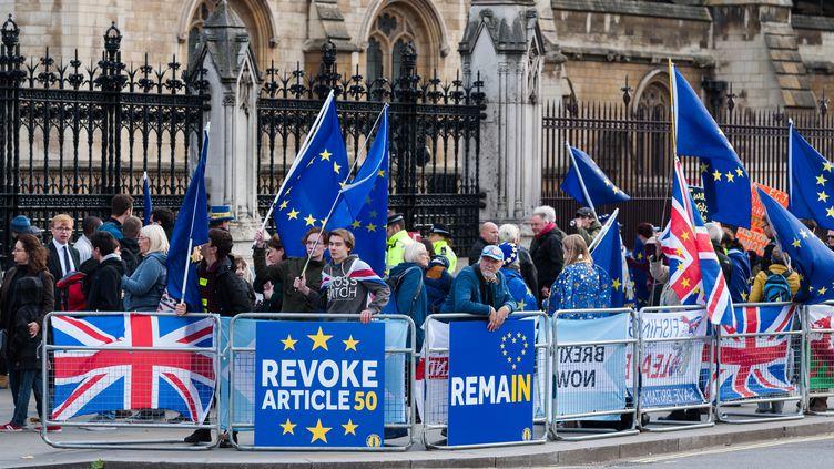 Des personnes manifestent contre le Brexit devant le Parlement britannique, le 30 octobre 2019 à Londres (Royaume-Uni). (WIKTOR SZYMANOWICZ / NURPHOTO / AFP)