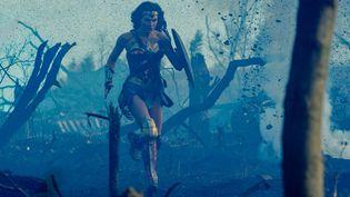 L'actrice israélienne Gal Gadotincarne Wonder Woman dans le film éponyme, sortien France le mercredi 7 juin 2017. (CLAY ENOS / WARNER BROS. ENTERTAINMENT)