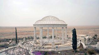 Une vue d'ensemble montre une partie d'un complexe de palais de Palmyre repris par les forces gouvernementales syriennes, le 24 mars 2016. (SANA / REUTERS)