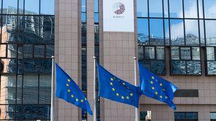 Les drapeaux devant le Conseil Européen à Bruxelles le 15 mai 2015. (DANIEL KALKER / DPA)