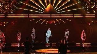 A partir du 12 janvier, les fans de Mike Brant, Claude François, Dalida, et Sacha Distel vont pouvoir assister au retour de leurs idoles sur scène, en hologrammes. (France 2)